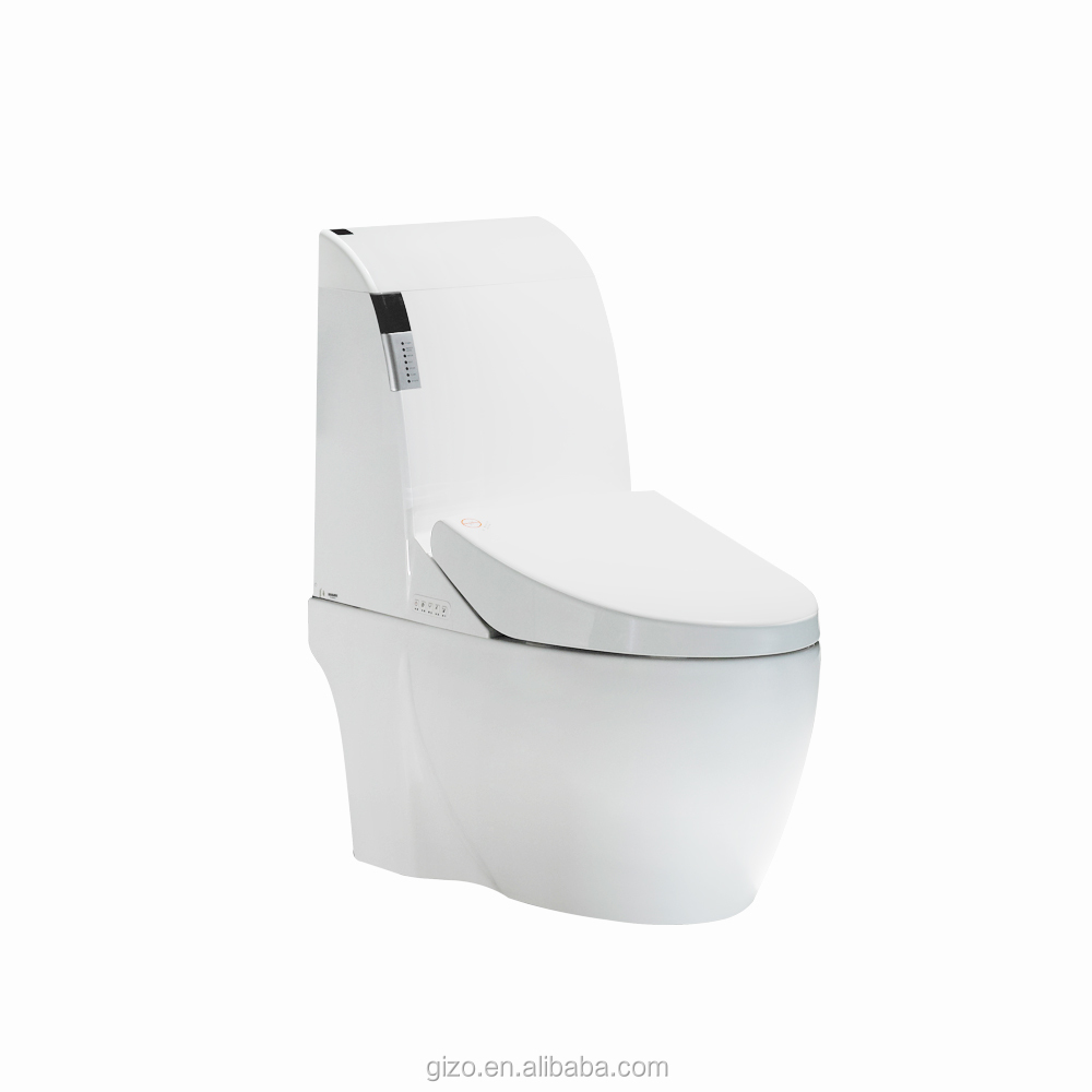 public dual flush smart toilet bidet with sensor lid