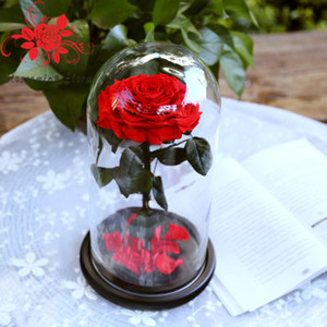 2018 Beauty and the Beast Eternal Rose Preserved Flower In Jar and Vase for Mother's Day