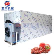 Hot Air Dryer For Fruit And Vegetable Processing Equipment