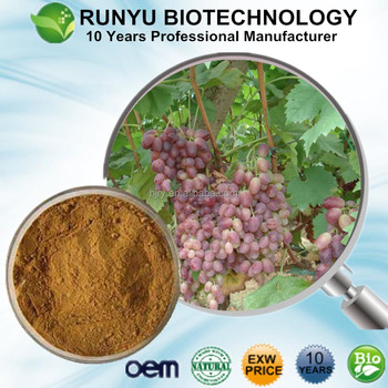 Buy Free Sample EXW Price GrapeVine Extract powder with 5% natural Resveratrol