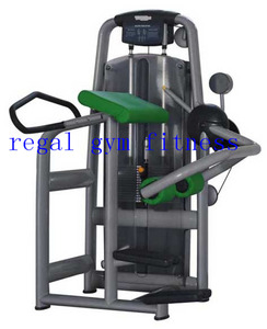 Best Quality Glute Machine Gym Equipment/Lifetime Fitness Machines for sale