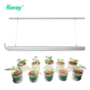 200w led grow light,Waterproof Led Grow Light,Led grow light for hydroponic greenhouse top canopy supplemental lighting
