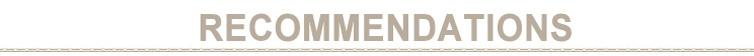 Custom logo beuken buis metalen rietje met borstel roestvrij staal stro set