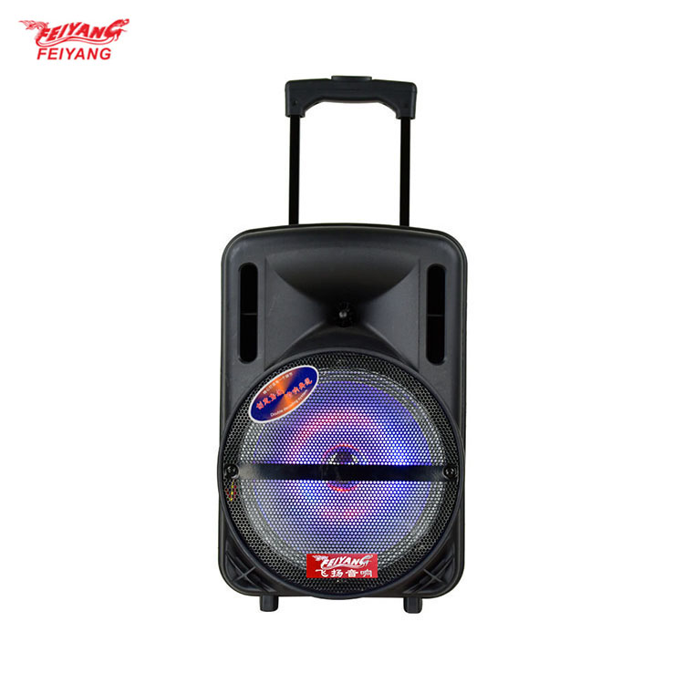 temeisheng(feiyang) High quality 12/15 inch USB handle megaphone IN ceiling speaker background sound system
