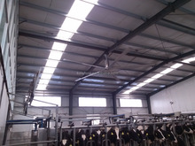 Super HVLS 24FT silent 5 blade NO NOISE cow barn ceiling fan