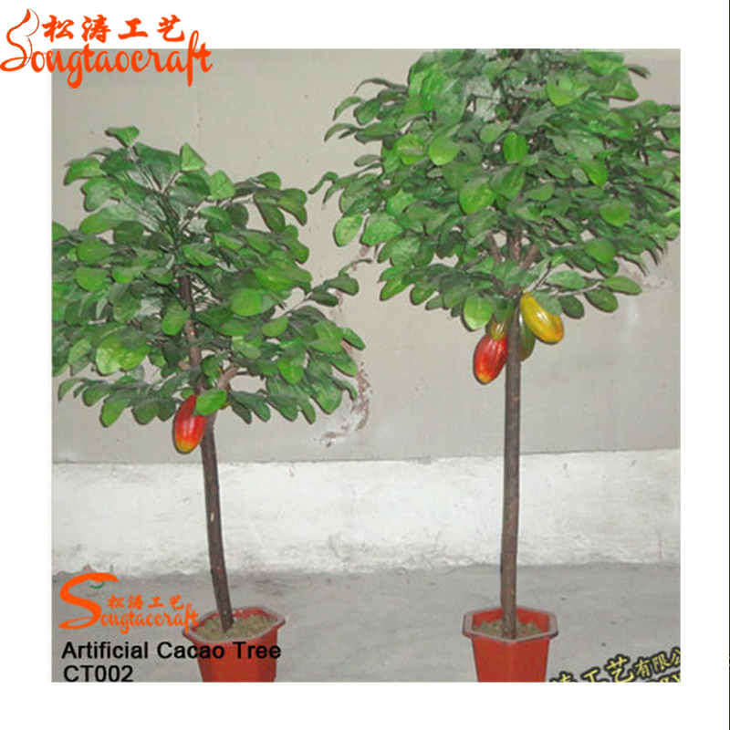 40 Fresh Seeds Murraya Paniculata Orange Jessamine Mock Orange Free Shipping