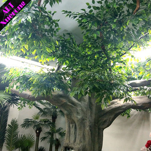 Indoor Or Outdoor Decorative Artificial Big Live Banyan Banian Ficus Tree From China Factory