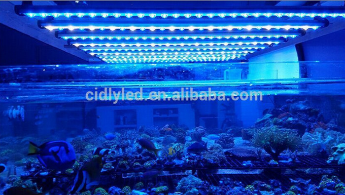 120cm 4ft Aquarium Led Light Strip Reef Aquarium Led Strips 65w ...
