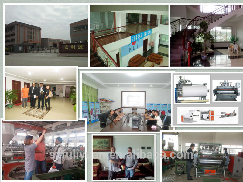 FLY-500/1000/1500 PE Casting Film Making Machine/Plastic Film Making Machine