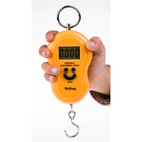 45Kgx10g Fashion Design Mini Hanging Weight Scale Palm Electronic Scales Digital Travel Luggage Scale for Sale