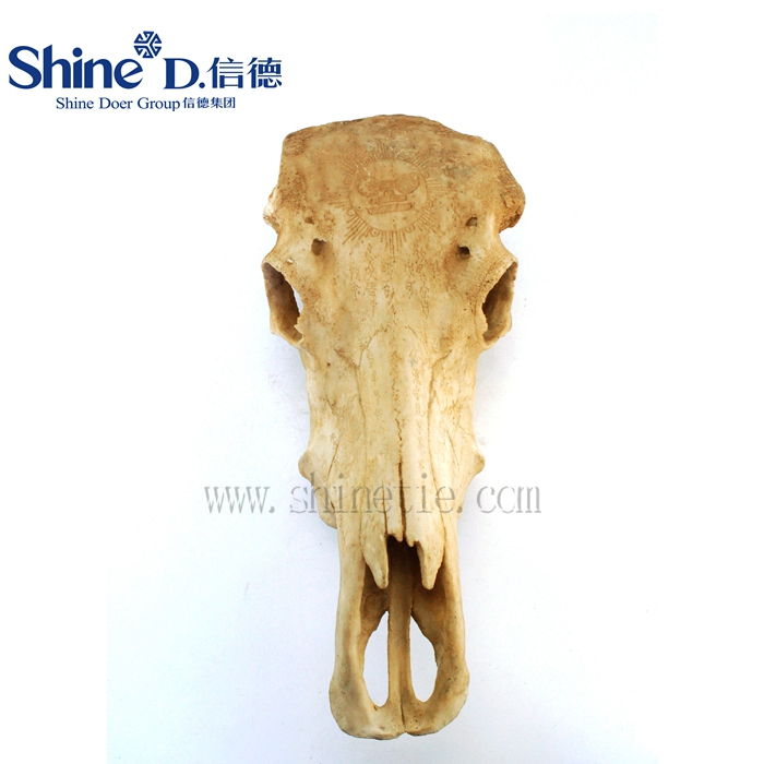 List Manufacturers of Cow Skull Wall Decor, Buy Cow Skull Wall Decor ...