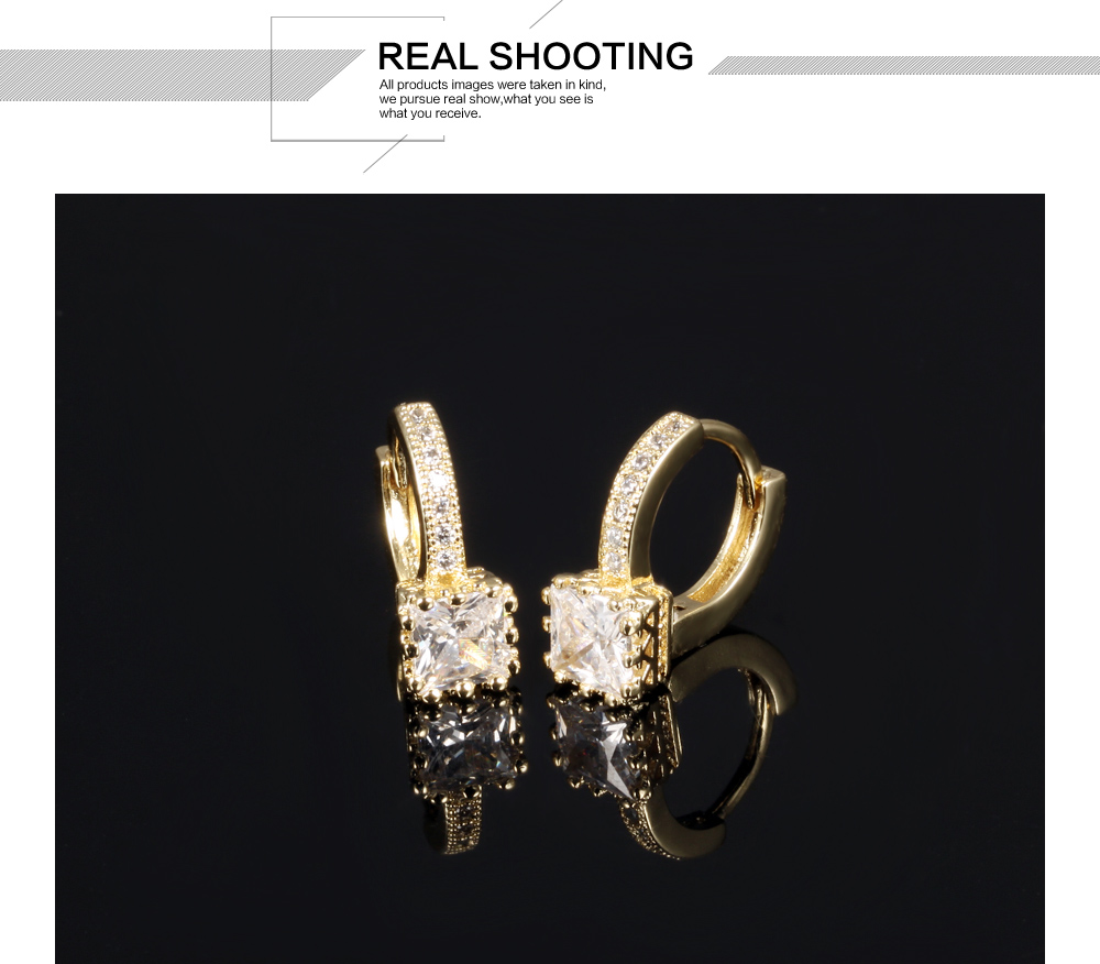 Fashion Jewellery Women Popular Amethyest Gold Hoop Brazil Earring