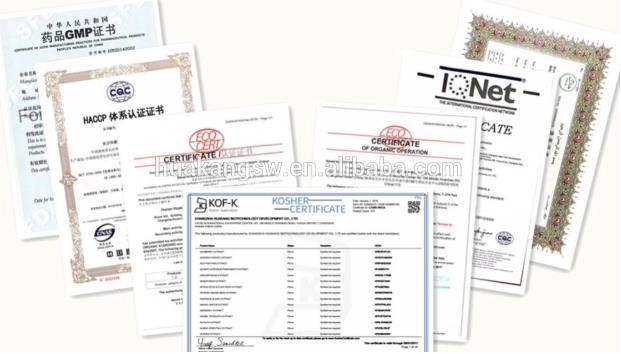 Huakang supply Ginkgo extract HACCP/Organic/Halal/Kosher/ISO certificates