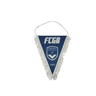 Custom Hanging Decorative Sports Flag Pennants