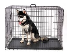 Galvanized Steel Chain Link Indoor Dog Kennels Wholesale Export For 18 Years