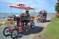 4- Wheeled Surrey Bike Used In Park - Buy Used Surrey Bike,4 Wheel ...