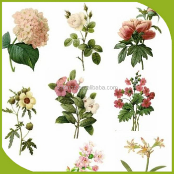 Where To Print Cheap Personalised Flowers Stickers Buy Where To - Print stickers cheap