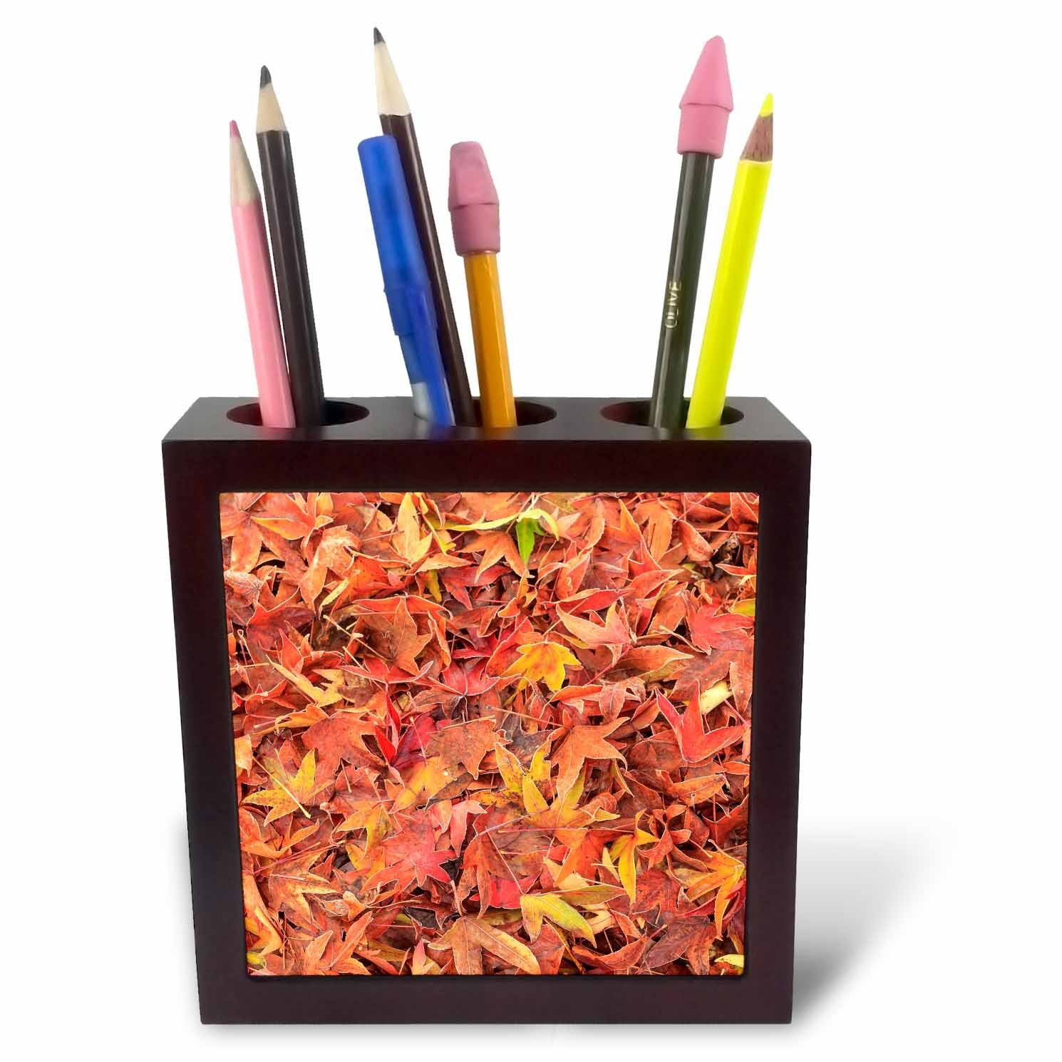 Danita Delimont - Autumn - Autumn color, maple leaves, Mill Creek, Washington State, USA - 5 inch tile pen holder (ph_231821_1)