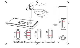 Canine Distenper(CDV) rapid test cassette