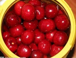 manufacturer of canned cherry in syrup