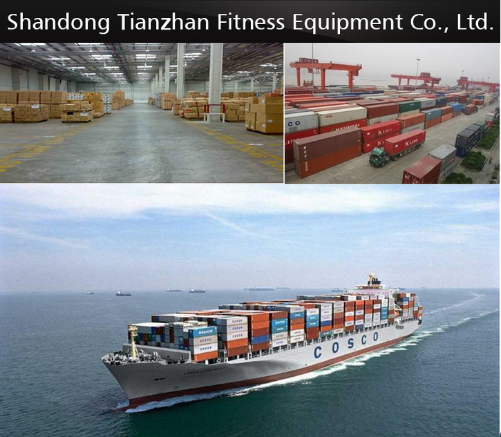 Cina Komersial Gym Peralatan Komersial Mesin Elliptical Cross Trainer TZ-7028