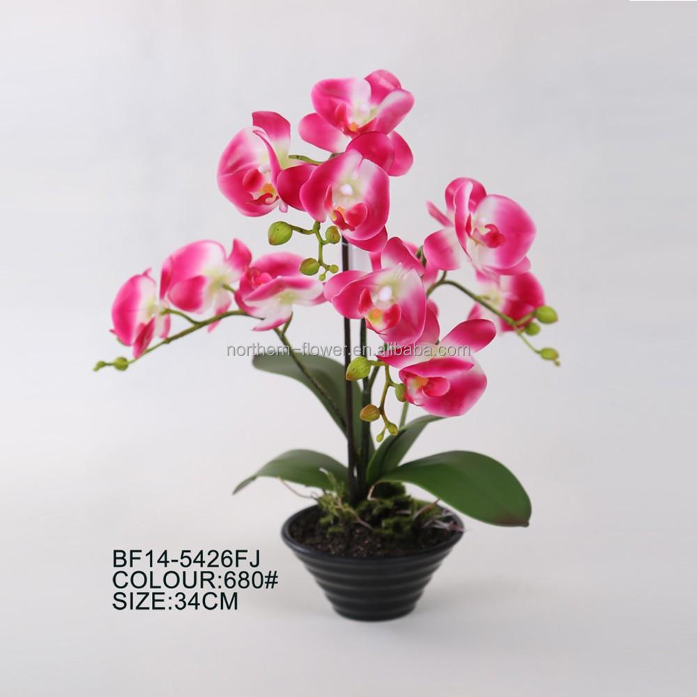 Indah Bunga Anggrek Buatan Di Pot Plastik Untuk Semua Kesempatan Buy Bunga Anggrek Buatan Murah Buatan Bunga Anggrek Bunga Anggrek Buatan Grosir Product On Alibaba Com