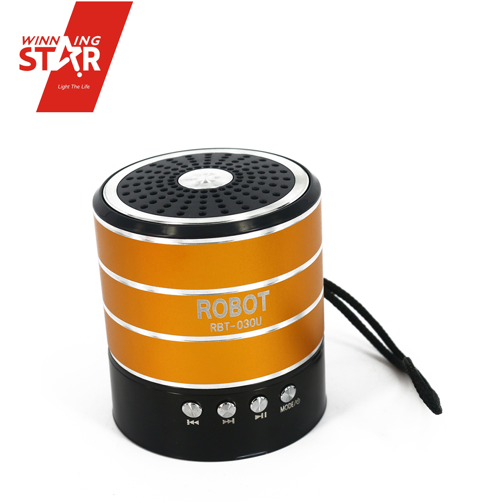 Hot Sale Mini Portable FM Radio With Bluetooth Speaker Support TF Card U Disk for PC/MP3/4/Mobile/Tablets