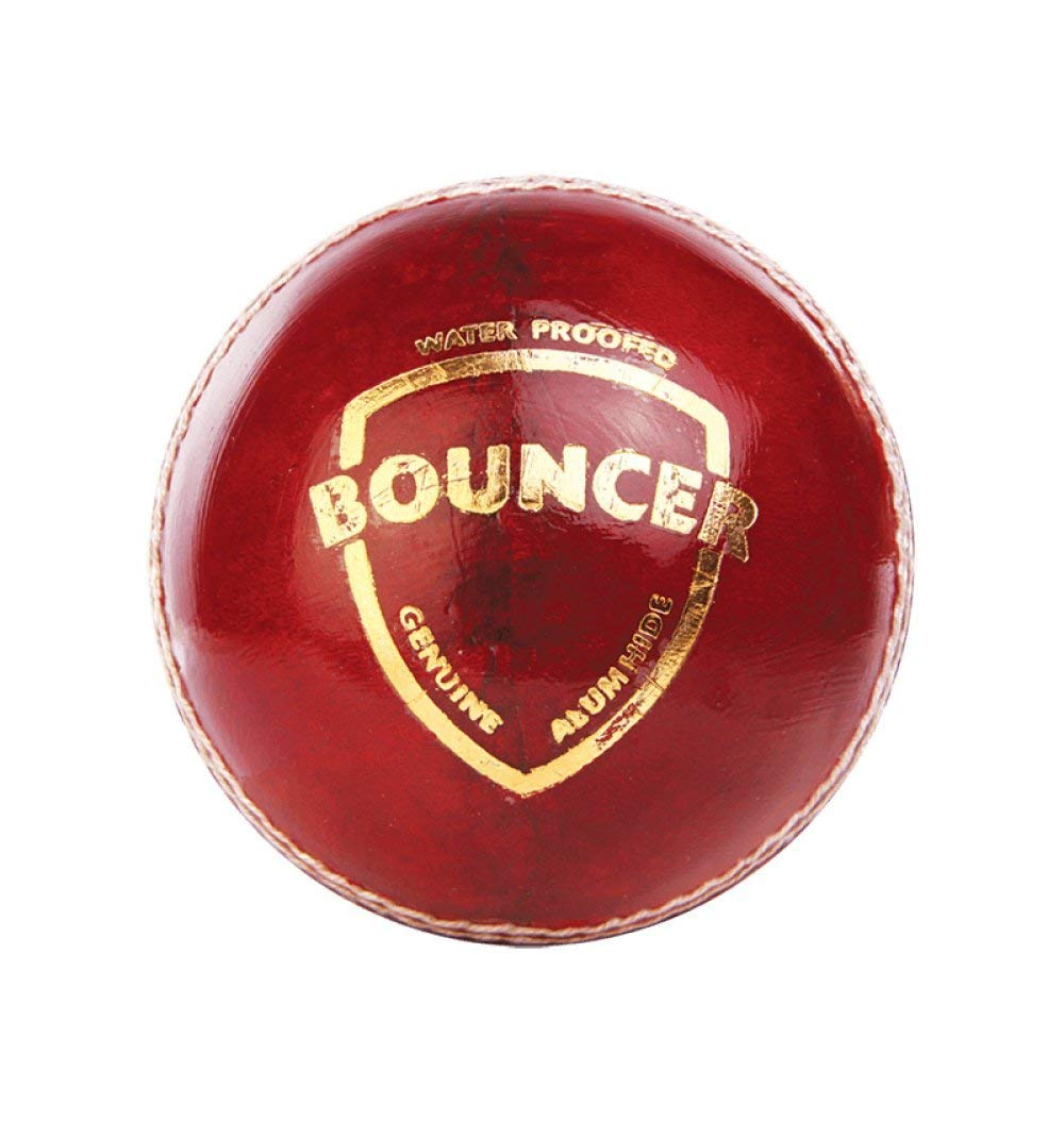 SG Cricket Bouncer Cricket Ball