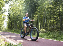 High speed brushless motor powered e bike mini adult e bike