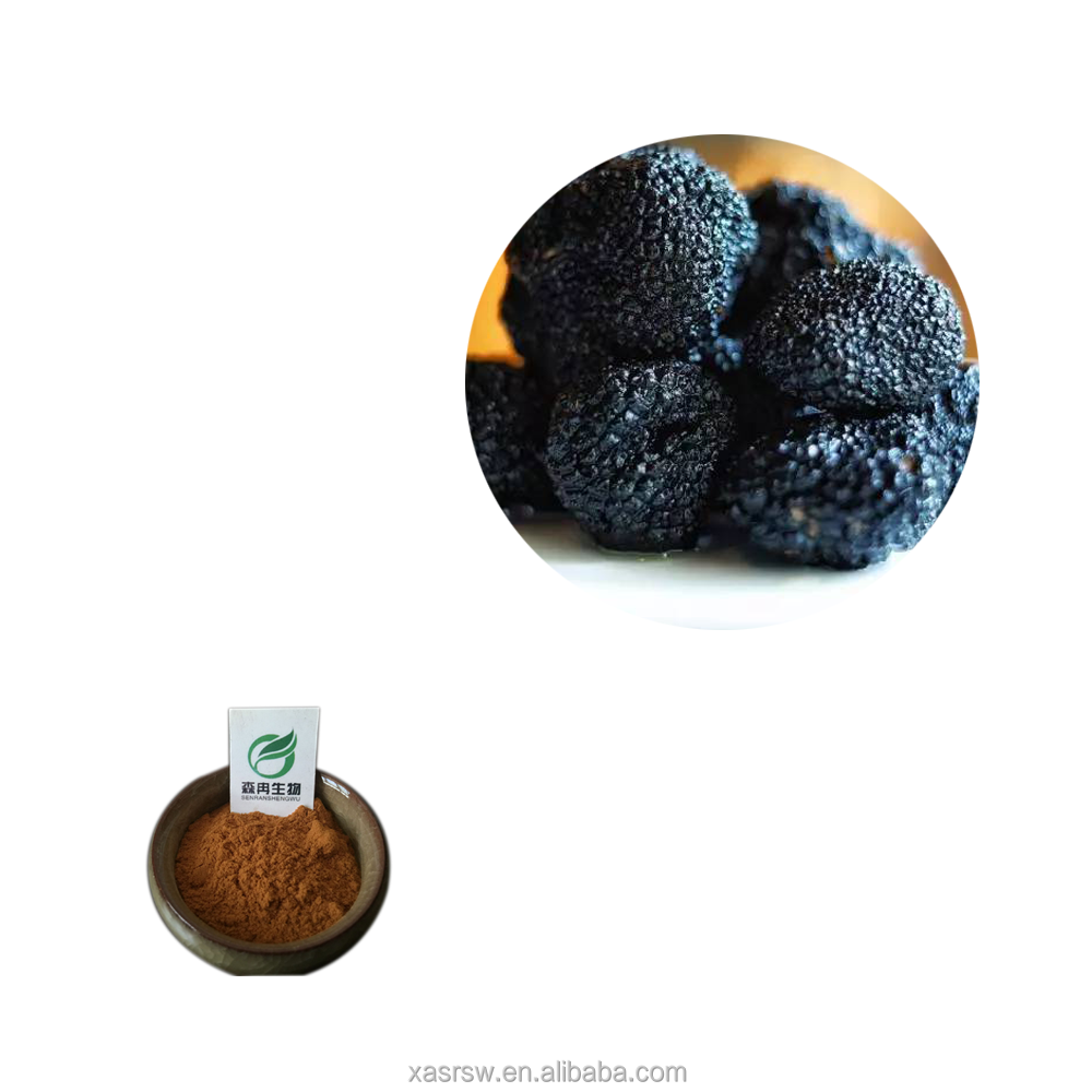 SR 100% Natural Perigord Truffle / Black Truffle Powder