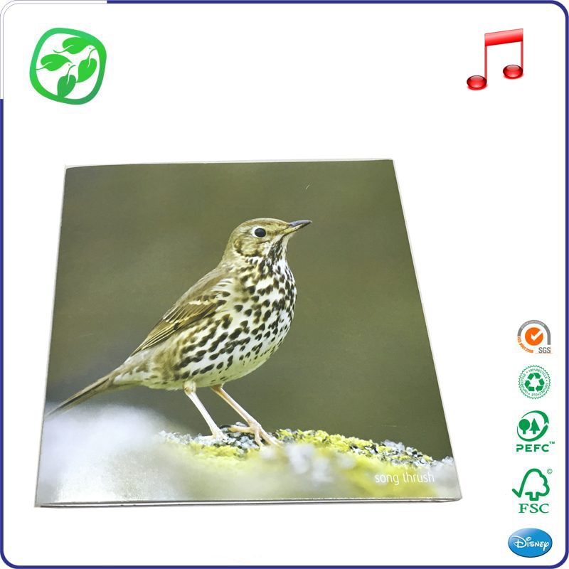 fancy song thrush Electronic greeting card