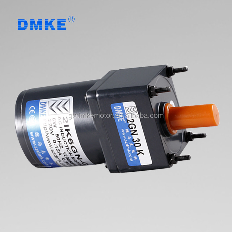 110 Volt Ac Gear Motor 6w Ac Motor For Electric Vehicle