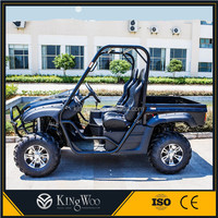 New Street legal electric dune buggy UTV for sale