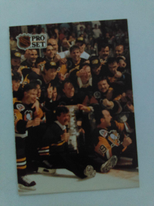 Mario Lemieux - 1991 Pittsburgh Penguins Stanley Cup Champions (Pittsburgh Penguins) 1991 Pro Set #319