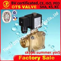 low price AC 220V solenoid valve