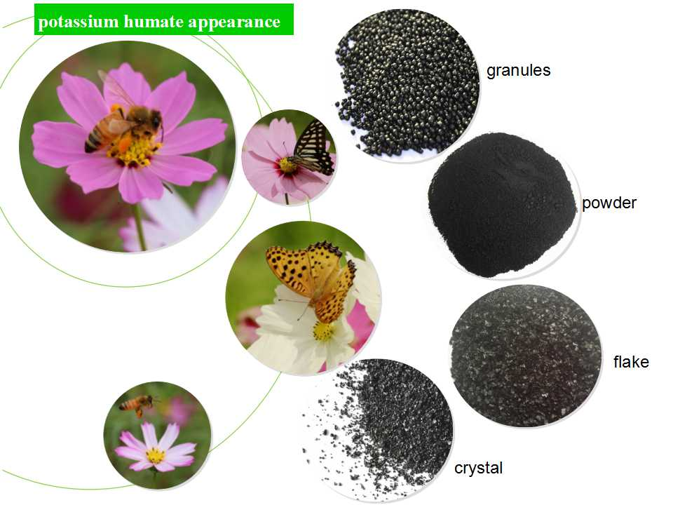 Potassium Humate Crystal 65% Humic Acid Fertilizer