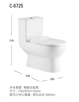 Swell C6725 New Design Dual Flushing Siphon Sanitary Ware Suite One Piece Toilet And Bidet Buy Sanitary Ware Suite Bidet One Piece Toilet Product On Customarchery Wood Chair Design Ideas Customarcherynet