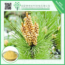 China Wholesale pine pollen extract pine pollen powder with free sample