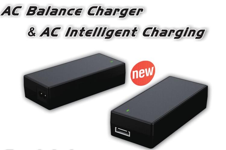 Ev-peak Has Perfect Charging Solution Uav Mini Car Battery Charger ...