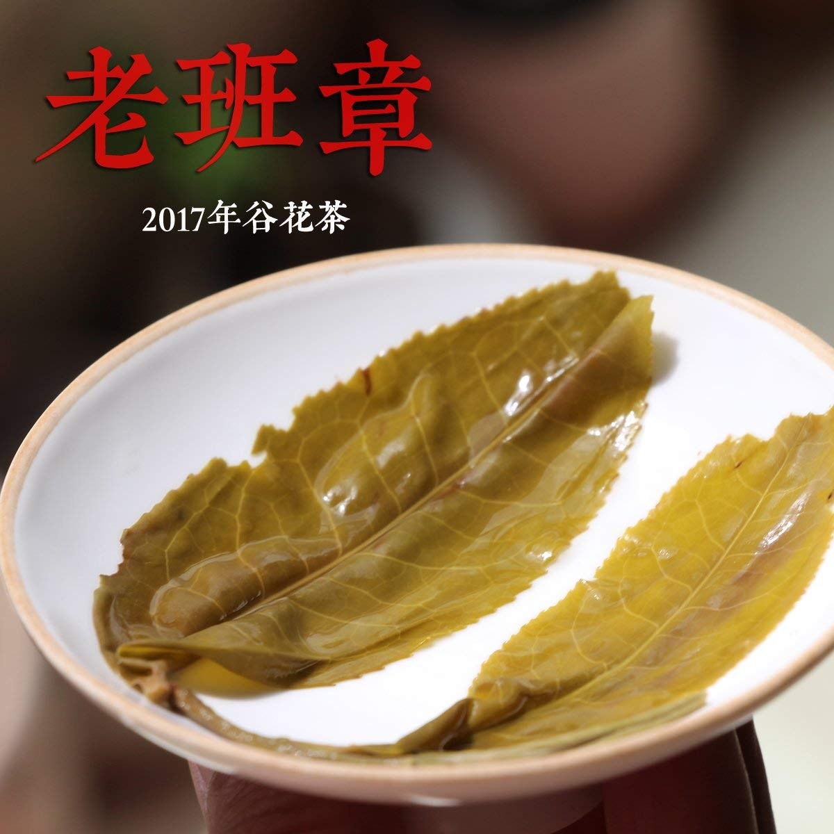 CHIY-GBC Ltd Chinese tasty snack, tea ceremony [CHIY-GBC Ltd Chinese tasty snack, tea ceremonyot] the old class Qiucha 2017 Pu'er Tea autumn tea trees tea tea Valley old class chapter 100 grams