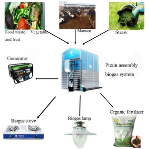 Generate Electricity From Waste Biogas Generation Plant