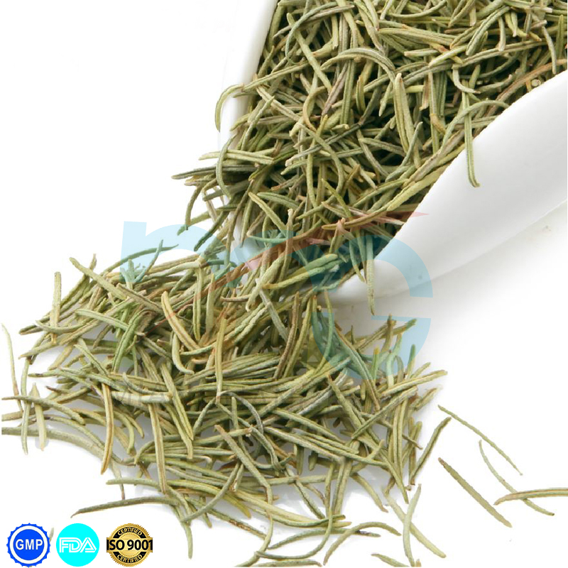 High quality dried rosemary herb