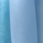 Eco Friendly China Polypropylene Spunbonded Roll PP Supplier Non Woven Fabric