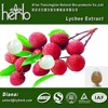 Manufacturer supply 100% Natural Lychee seed extract