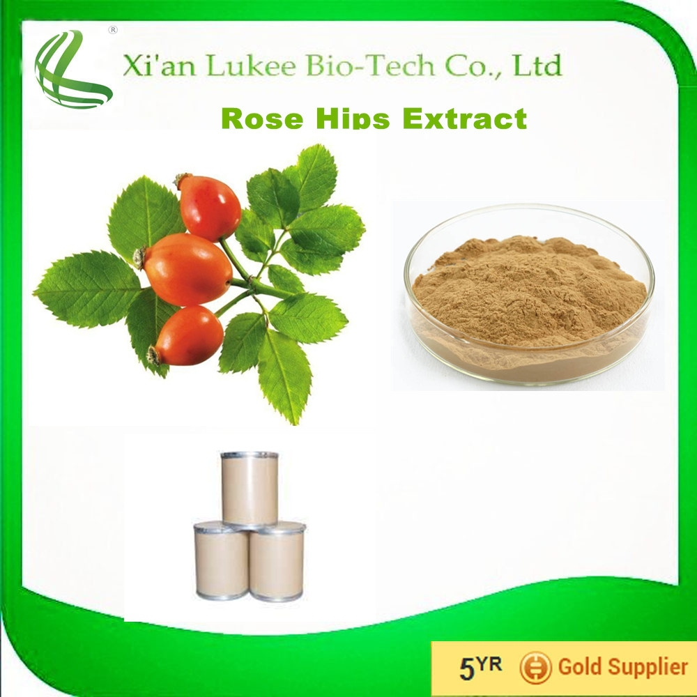 5%-10% Vitamin C rose hip extract/vitamin c tablet rose hip/rose hip price