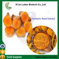 100% Natural Turmeric Root Extract 95% Curcumin