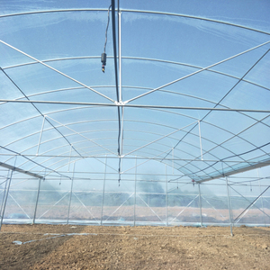 commercial used industrial multi span green house for vegetables