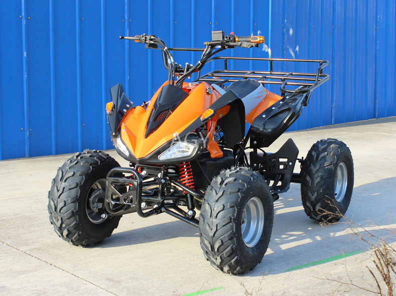 AGY 48v 1200w atv electric quad