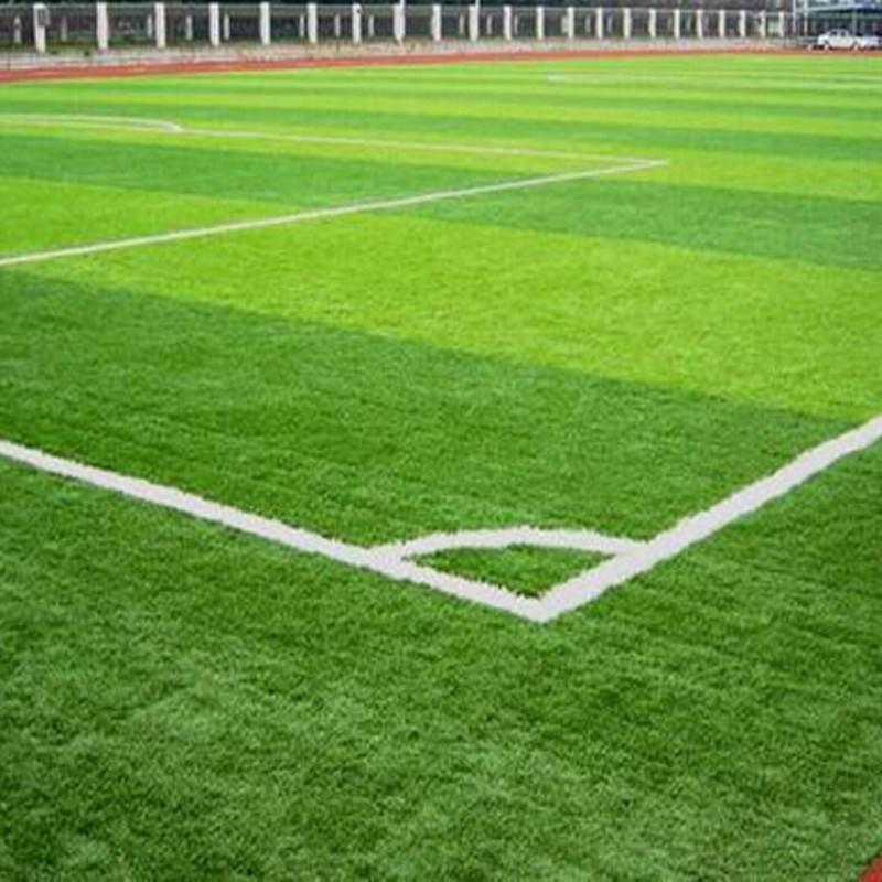 Backyard Turf Soccer Field : FootballYardSyntheticGrassForSoccerFieldjpg
