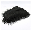 Factory Wholesale All size black ostrich feathers